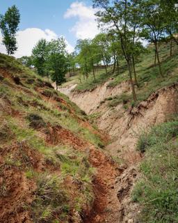 土壌侵食.jpg